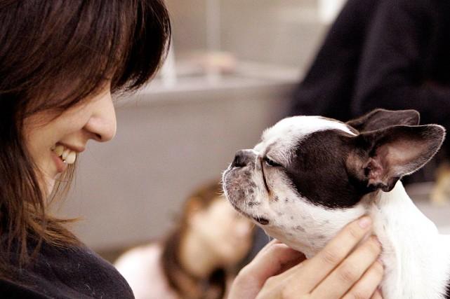 Émilie Boyer n'a pas de chien, mais le fait de passer du temps avec Ralph, le... (PHOTO ARCHIVES AGENCE FRANCE-PRESSE)