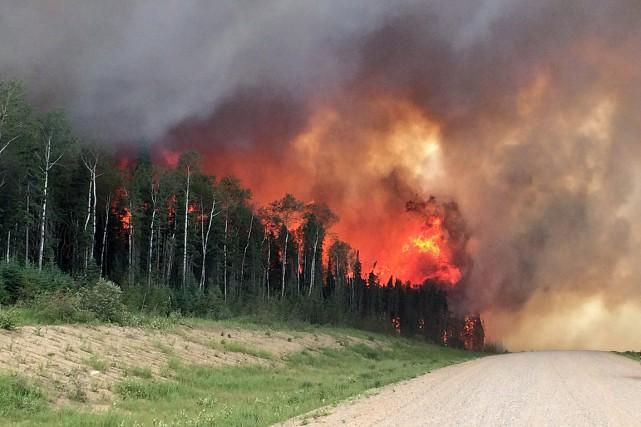 565 foyers d'incendie ont été déclarés cette année,... (Photo fournie par le ministère des routes et des infrastructures de la Saskatchewan)