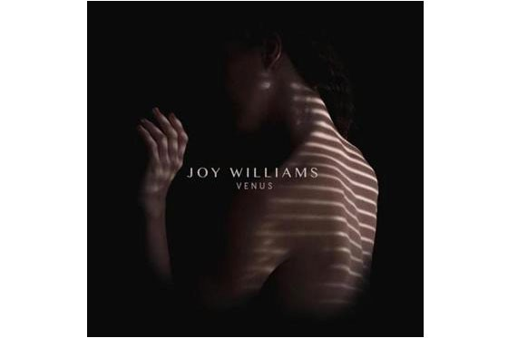 Joy Williams est une fervente féministe. L'ex-moitié de The Civil Wars,...