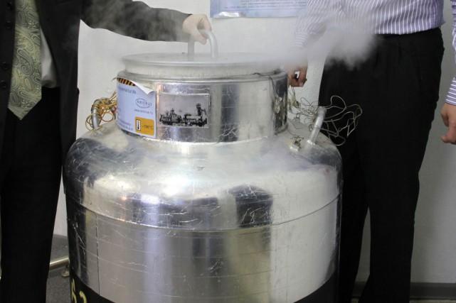 La loi ne définit pas la cryogénisation, ajoute... (PHOTO ARCHIVES AFP)