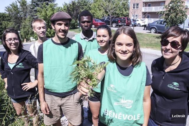 Les équipes d'arracheurs d'herbe à poux sont composées... (Patrick Woodbury, LeDroit)
