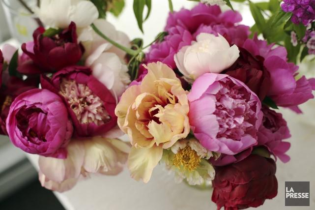 Selon Carmel Sabourin-Goldstein, la fleur locale «permet de... (Photo Martin Chamberland, La Presse)