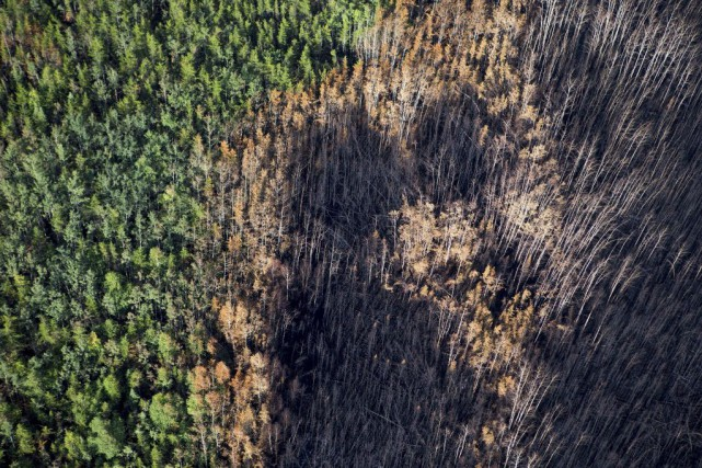 Un plus grand nombre d'incendies qu'à l'accoutumée ont... (Photo Liam Richards-The StarPhoenix, La Presse canadienne)