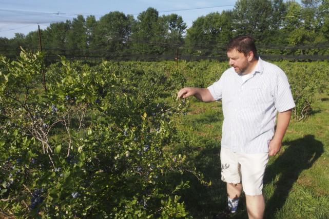 Pierre Bell, copropriétaire des Petits fruits bio, à... (photo Alain Dion)
