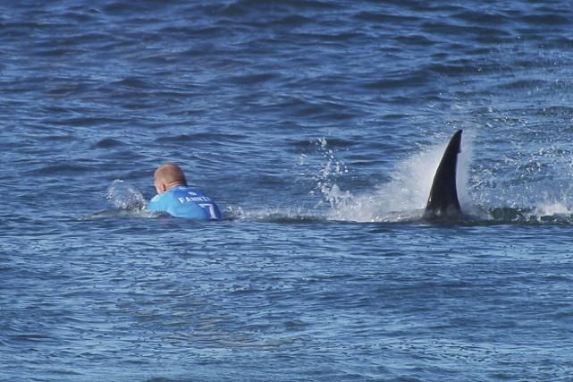 Le surfer Mick Fanning a survécu à une... (Agence France-Presse)