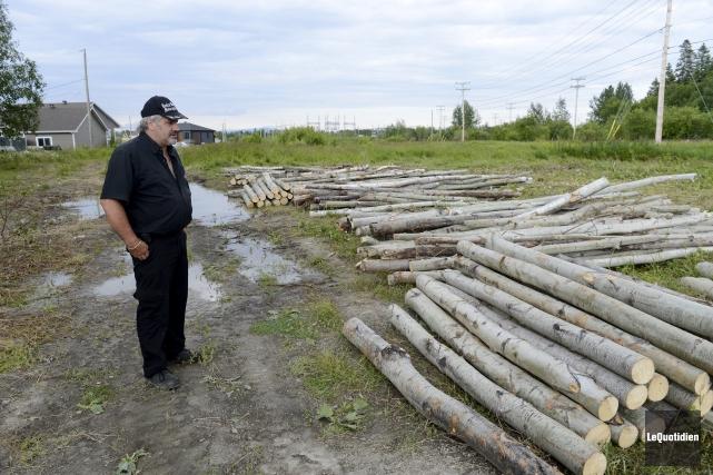 Angelo Bergeron s'indigne que les arbres aient été... ((Photo Le Quotidien, Jeannot Lévesque))
