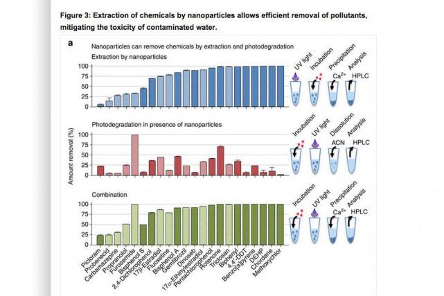 Le chercheur Nicolas Bertrand veut utiliser des nanoparticules... (Image tirée du site www.nature.com)