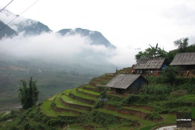 Les rizières et les nuages qui enveloppent les... (La Tribune, Jonathan Custeau)