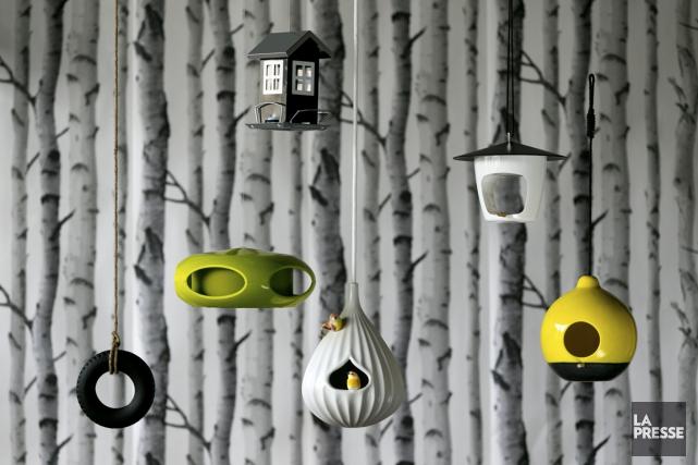 Savez-vous parler aux oiseaux? Attirez-les et séduisez-les avec de jolies... (Photo François Roy, La Presse)