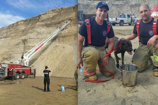Un chien en détresse a reçu la précieuse aide des pompiers de Val-des-Monts et... (Courtoisie)