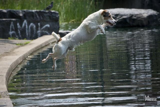 Selon André Cantin, météorologue chez Environnement Canada, l'air... (Photo Patrick Sanfacon, archives La Presse)