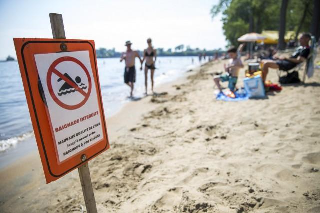 La baignade est interdite à la plage de... (Olivier Croteau)
