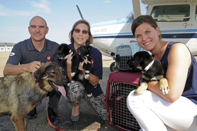 La SPA Mauricie a accueilli une maman chien,... (Andréanne Lemire)