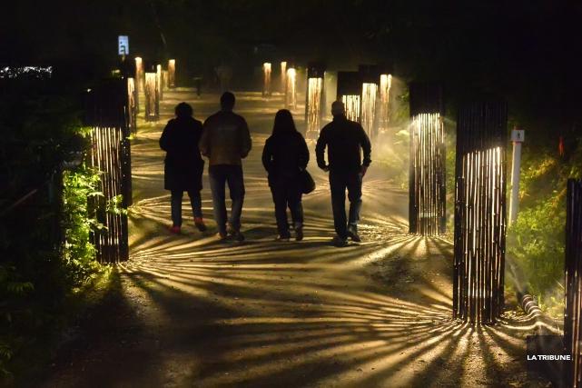 Lundi soir dernier Foresta Lumina a été l'hôte de visiteurs uniques,... (Archives La Tribune)