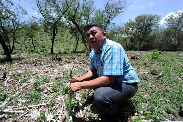 Le maire de la ville de Texiguat, Lindolfo... (Photo Orlando Sierra, AFP)