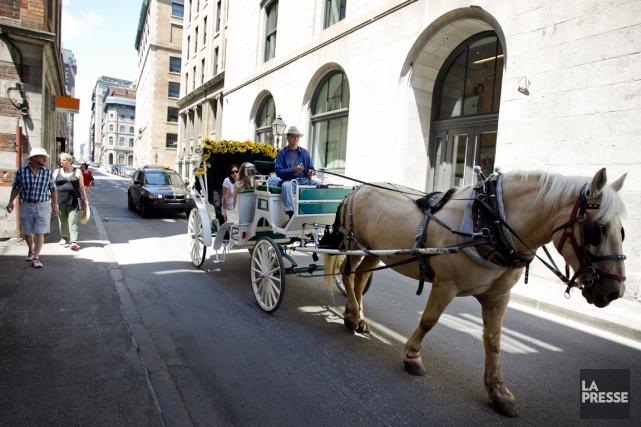 La Ville remarque une amélioration de la santé... (Photo archives La Presse)