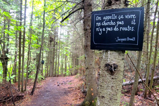 Les panneaux poétiques de Mme Chose ont été... (Photo Dany Chartrand)