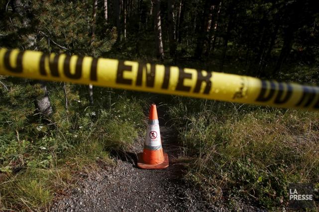 Un randonneur a été tué et partiellement dévoré par un ou plusieurs ours, des... (Photo Jim Urquhart, Reuters)