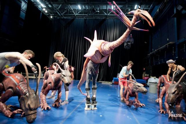 Les artistes du Cirque du Soleil s'exercent à... (PHOTO MARCO CAMPANOZZI, LA PRESSE)