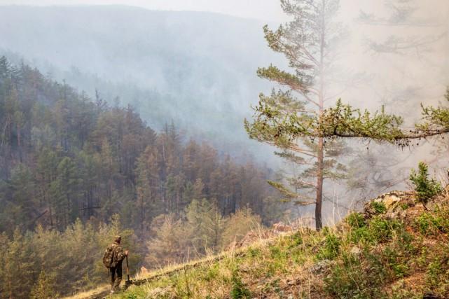 Le feu sévit notamment ces derniers jours sur... (Photo PETR SHELOMOVSKIY, AFP)