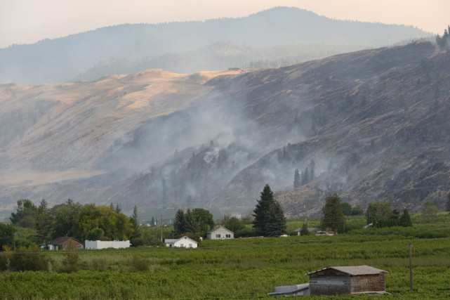 Les deux incendies se trouvent sur les collines... (Photo Jonathan Hayward, PC)