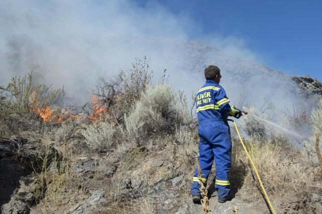 Les équipes de pompiers qui tentent d'éteindre les incendies de forêt dans le... (Photo Jonathan Hayward, PC)