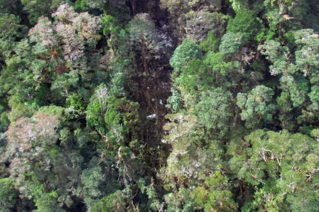 L'appareil s'est écrasé dans les montagnes Bintang, dans... (PHOTO AFP)