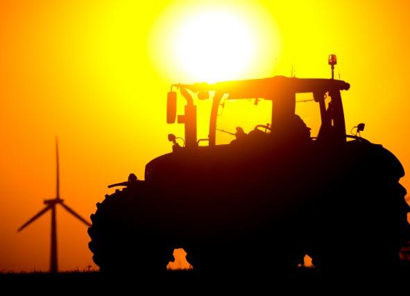 La planète a battu de nouveaux records de chaleur en juillet, avec une... (PHOTO PATRICK PLEUL, AFP/DPA)
