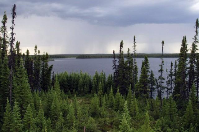 Des chercheurs sonnent à nouveau l'alarme: le réchauffement climatique... (PHOTO ARCHIVES LA PRESSE CANADIENNE)