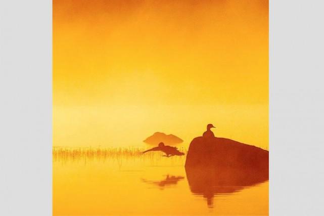 Félicitations à @lilynougat, dont le cliché des canards au petit matin est le... (@lilynougat)