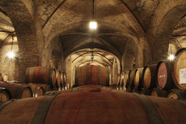 Les vignerons du Chili renouent avec d'anciens terroirs... (Courtoisie)