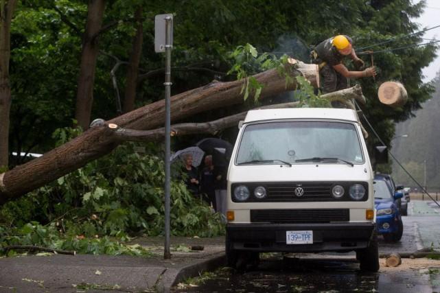 Environnement Canada a diffusé, samedi, une alerte de... (Photo Darryl Dyck, La Presse canadienne)