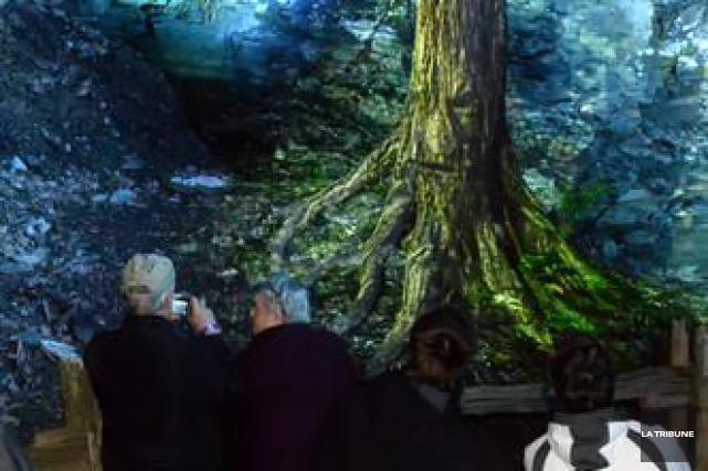 L'arbre mutant du parcours animé de Foresta Lumina,... (Imacom, Maxime Picard)
