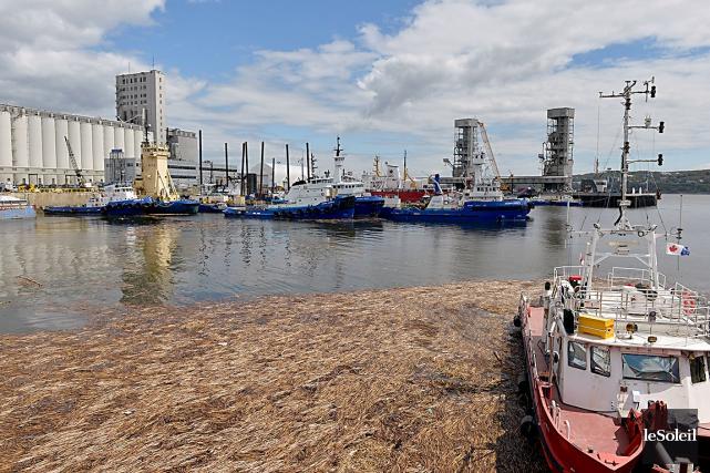La première phase du projet d'agrandissement du port... (Photothèque Le Soleil, Pascal Ratthé)