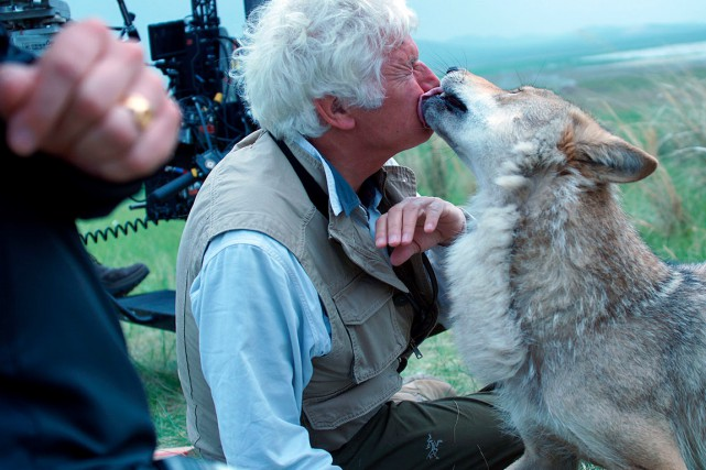 Le dernier loup, deJean-Jacques Annaud, a étéjugé insuffisamment... (Photo fournie par Sony Pictures)