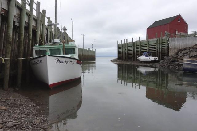 La vallée de l'Annapolis, en Nouvelle-Écosse, paraît beaucoup plus loin sur une... (Karyne Duplessis Piché, collaboration spéciale)