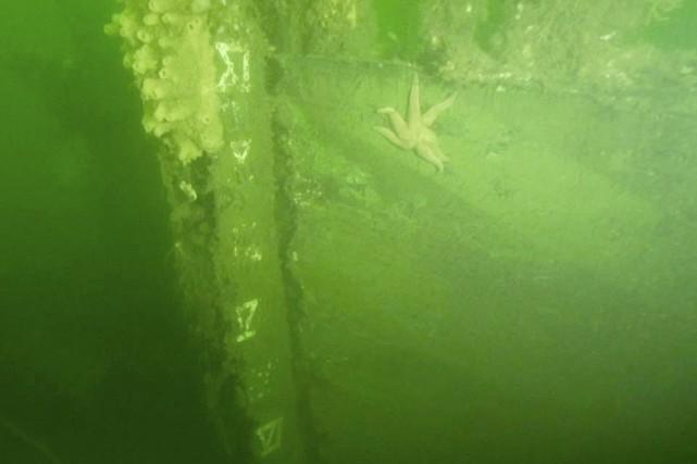 La proue du côté bâbord de l'épave du... (PHOTO FOURNIE PAR SAMUEL CÔTÉ)