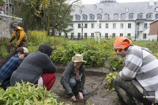 Accompagnés de professionnels de l'archéologie, quatre étudiants du... (Photo: Stéphane Lessard, Le Nouvelliste)