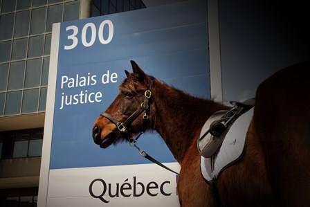 Du haut de ses 14 ans, Camille Côté estime que le Québec est prêt pour un... (Photo tirée de Facebook)