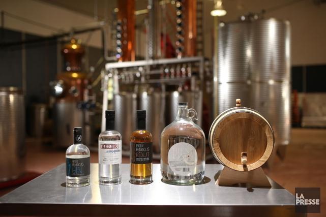 Les distillateurs Subversifs ont lancé trois nouveaux produits,... (PHOTO MARTIN CHAMBERLAND, LA PRESSE)