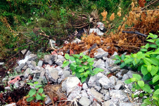 Voilà un échantillon des matières récupérables qu'on trouve... (Fournie par la Ville de Baie-Comeau)