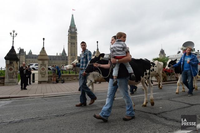Les agriculteurs craignent que le gouvernement fédéral fasse... (Photo Sean Kilpatrick, La Presse Canadienne)