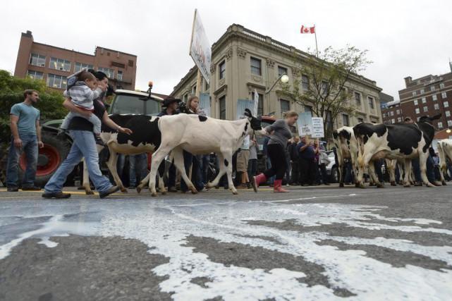 Des dizaines de fermiers inquiets ont manifesté sur... (Sean Kilpatrick, La Presse Canadienne)
