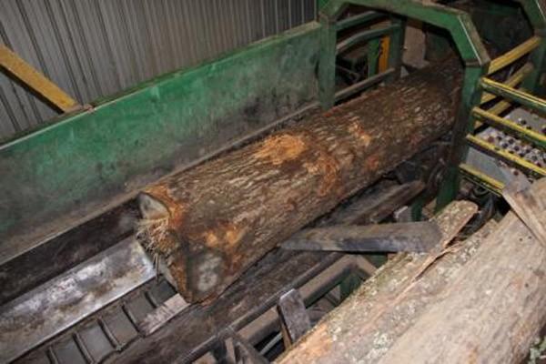 La CSST blâme l'entreprise Bernier Bois Franc, de Lambton, à la suite de... (Photo fournie par la CSST)