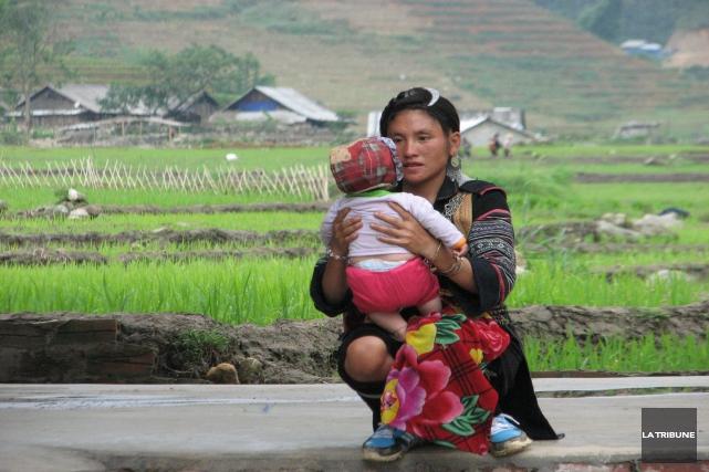 J'ai vu des paysans au Vietnam qui ne... (La Tribune, Jonathan Custeau)