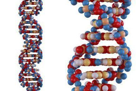 Les organisateurs d'un sommet international sur l'édition du génome humain à... (PHOTO MOPIC)
