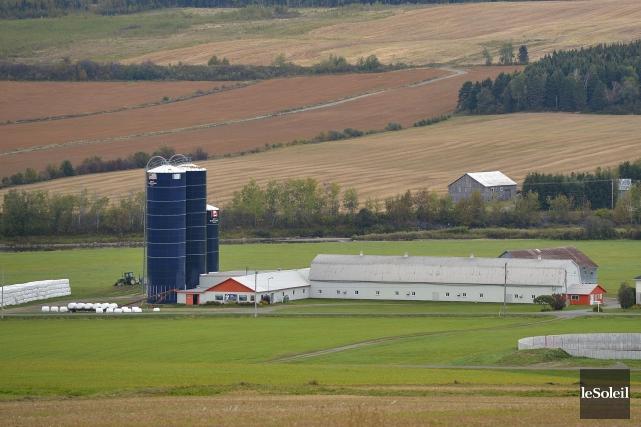 C'est la consternation, chez plusieurs producteurs laitiers dans l'Est... (Le Soleil, Yan Doublet)