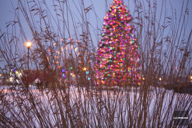 L'arbre de Noël géant installé au Marché de... (Archives, La Tribune)