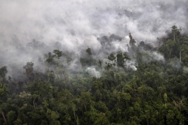 L'archipel est ravagé comme chaque année pendant la... (Photo Regina Safri/Antara Foto, REUTERS)