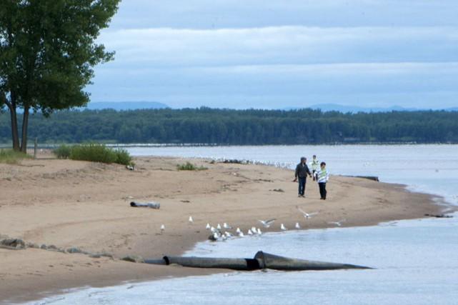 Le projet d'un parc Éco-Nature le long de... (Stéphane Lessard)